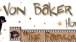 "Von Baker Rottweilers - Home of - ""The Fabulous Baker Boys"""